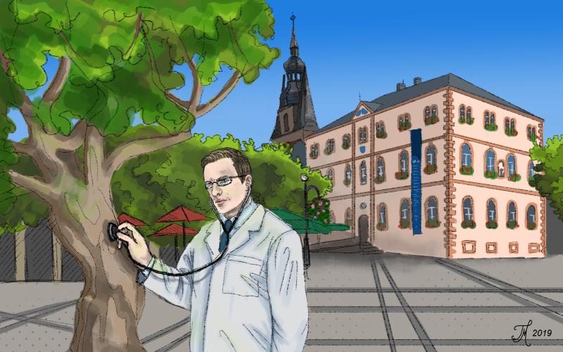 carlosmrosek zustand baum stwendel - Klimanotstand in St. Wendel - We love Klimawandel